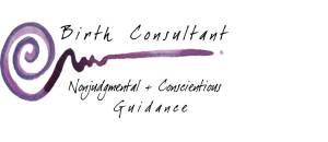 birth consultant2